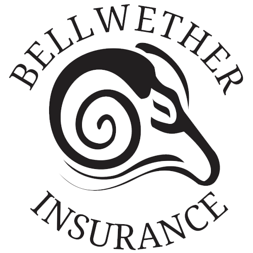 Bellwether Insurance